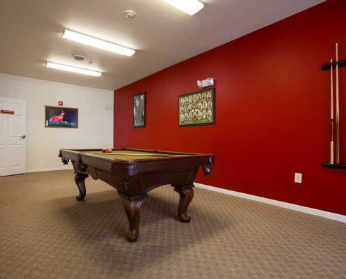 Brookhaven at County Line Senior Apartments Pool Table